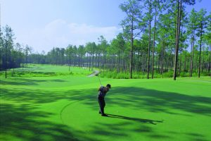 Grand-Biloxi-Casino-Hotel-Property-Amenities-Grand-Bear-Golf-Course-2